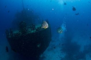 Maldives by Tchami (Shipwreck)