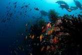 Maldives by Tchami